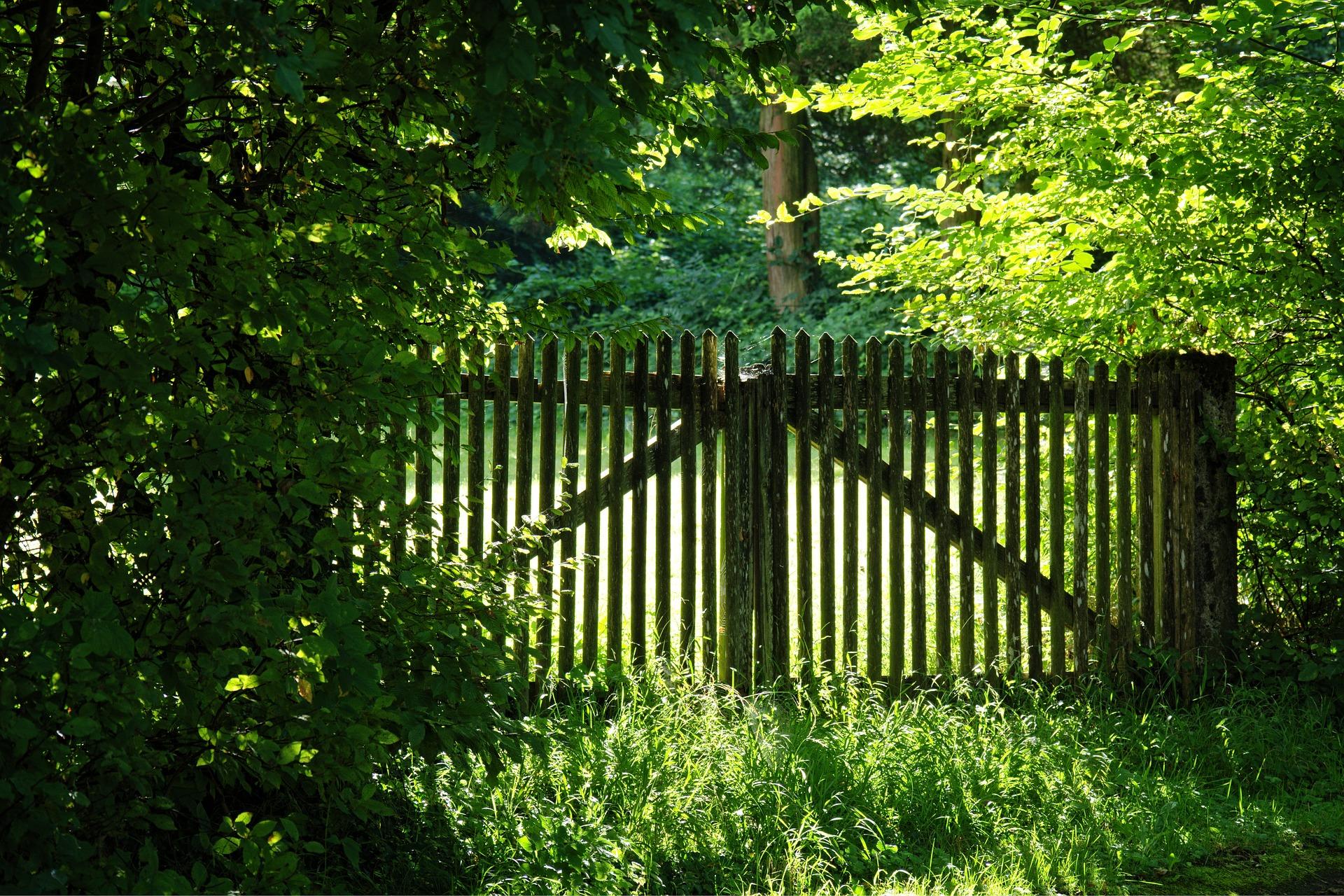 dřevěný plot